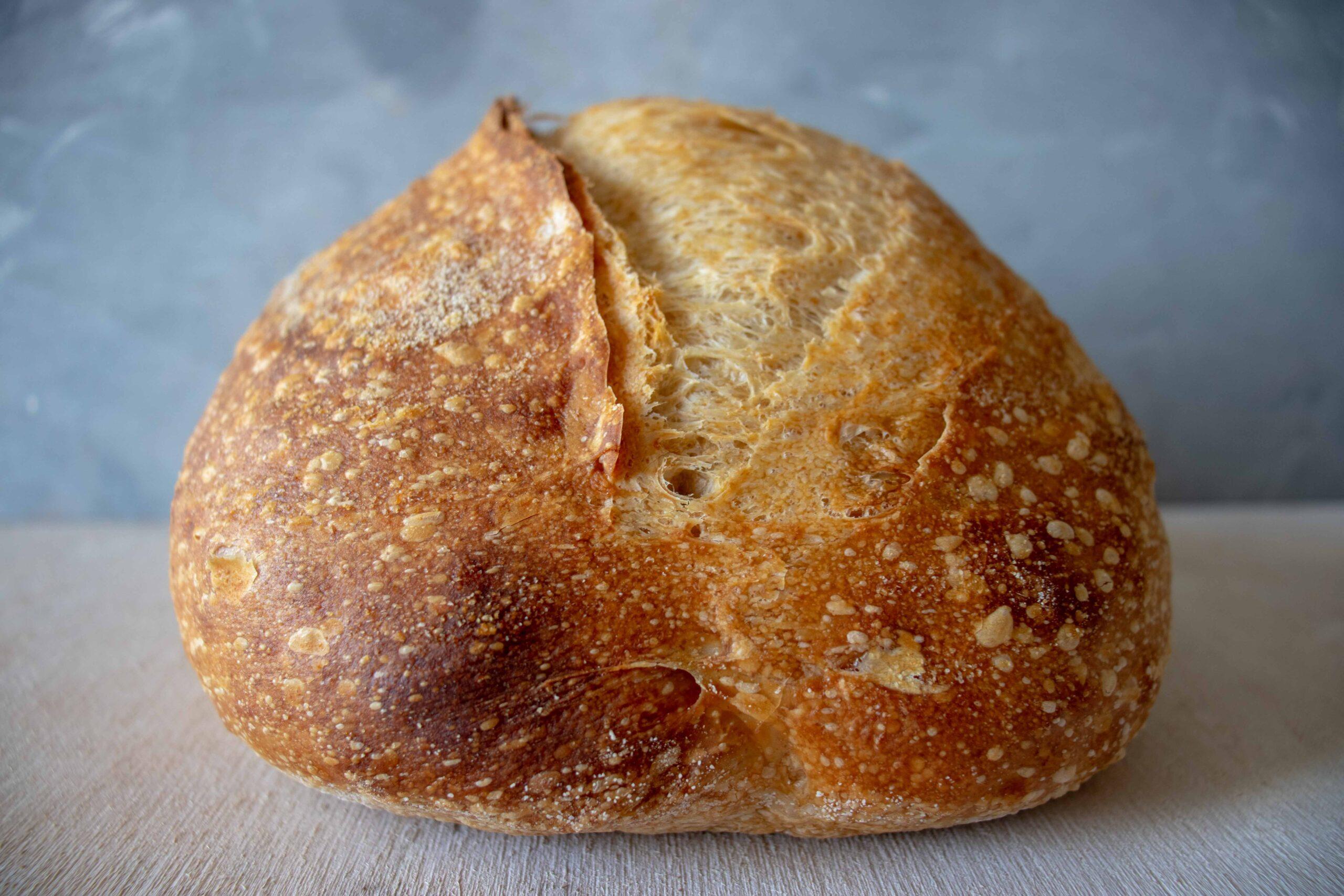 paine de casa cu maia